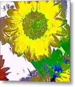 Sunflower 30 Metal Print