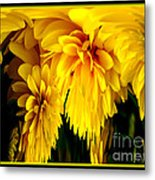 Sunflower Abstract 1 Metal Print