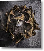 Sunflower Abstract Square Metal Print