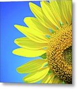 Sunflower Against Blue Sky Metal Print