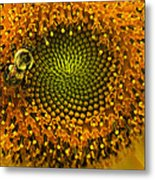 Sunflower An Bumble Metal Print by Brittany Perez