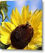 Sunflower And Bee-3879 Metal Print
