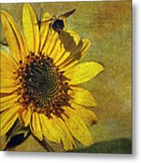 Sunflower And Bumble Bee Metal Print