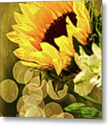 Sunflower And The Lights Metal Print
