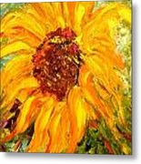 Sunflower Metal Print by Barbara Pirkle