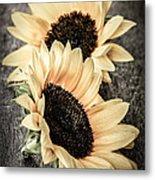 Sunflower Blossoms Metal Print