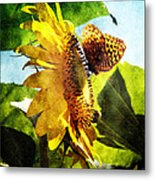 Sunflower Butterfly And Bee Metal Print