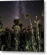 Sunflower Field At Night Metal Print