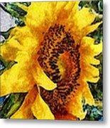 Sunflower Heart Metal Print