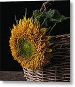 Sunflower In A Basket Metal Print