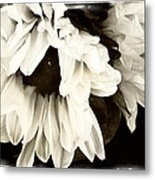 Sunflower In Black And White 1 Metal Print