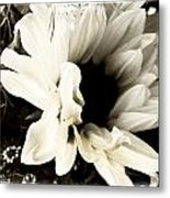 Sunflower In Black And White 3 Metal Print by Tanya Jacobson-Smith