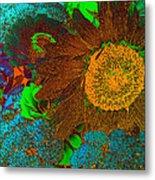 Sunflower In Brown Metal Print