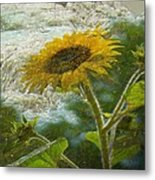 Sunflower Mountain Metal Print