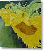 Sunflower Original Oil Painting Colorful Bright Sunflowers Art Floral Artist K. Joann Russell  Metal Print