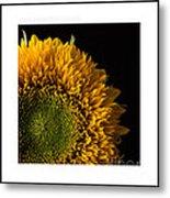 Sunflower Original Signed Mini Metal Print