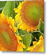 Sunflower Smiles Metal Print