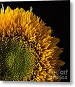 Sunflower Square Metal Print