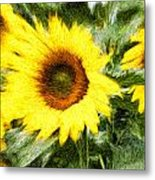 Sunflower Study 3 Metal Print