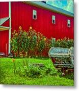 Sunflowers Beside A Big Red Barn Metal Print