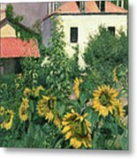 Sunflowers In The Garden At Petit Gennevilliers  Metal Print