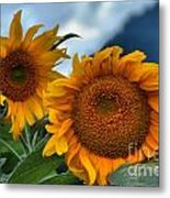 Sunflowers In The Wind Metal Print