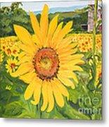 Sunflowers - Red Barn - Pennsylvania Metal Print
