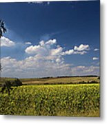 Sunflowers With Cloudy Blue Sky Metal Print