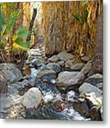 Sunlight Over Rocky Andreas Creek In Indian Canyons-ca Metal Print