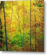 Sunlights Warmth Metal Print