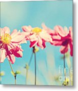 Sunlit Anemone Flowers With Cross Processed Effect Metal Print