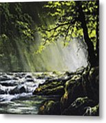 Sunlit Dream Metal Print