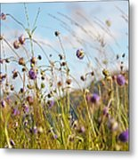 Sunny Bliss. Rest And Be Thankful. Scotland Metal Print