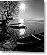 Sunny Day Metal Print by Davorin Mance