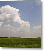 Sunny Day In The Country Metal Print
