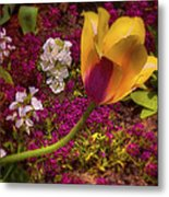 Sunny Disposition Metal Print by Jill Balsam