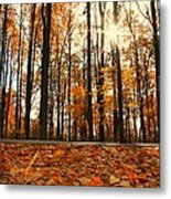 Sunny Fall Day Metal Print by Candice Trimble