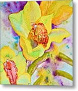 Sunny Splash Of Orchids Metal Print