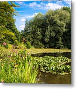 Sunny Summer Day At The Lake Beautiful Green And Blue Colors Metal Print