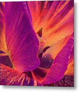 Sunray Flower Abstract Metal Print