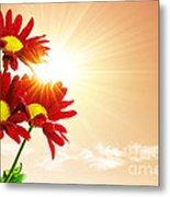Sunrays Flowers Metal Print