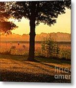 Sunrise 365 13 Metal Print