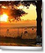 Sunrise 365 15 Metal Print