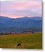 Sunrise And Deer In Cades Cove Metal Print