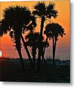 Sunrise And Group Of Palm Trees Metal Print