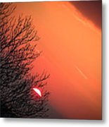 Sunrise And Hibernating Tree Metal Print