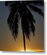 Sunrise And Palm Tree Metal Print