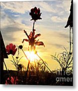 Sunrise Angel Metal Print
