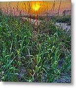 Sunrise At Myrtle Beach Metal Print