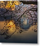Sunrise At The Thomas Jefferson Memorial Metal Print